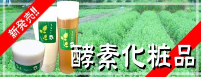 keshou_banner.jpg